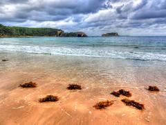 Shoreline I (elphweb) Tags: hdr highdynamicrange nsw australia coast coastal beach water ocean sea island rosedale wave waves jimmies jimmiesisland sky skies cloud clouds cloudy cloudformations