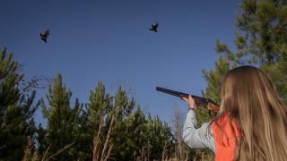 OCF-quailrise-gunswing