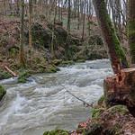 Alfbach vor Strohn in der Eifel thumbnail