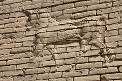 Western Wall lower Ishtar Gate, Babylon (5).jpg (tobeytravels) Tags: iraq babylon babel mesopotamia akkadian amorite hammurabi assyrian neobabylonian hanginggardens achaemenid seleucid parthian roman sassanid alexanderthegreat nebuchadnezzar sargon chaldean hittites sennacherib xerxes