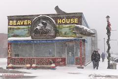 Winter in Grand Marais (dtredinnick13) Tags: grandmarais greatlakes highway61 northshore northernminnesota lakesuperior beaverhouse cookcounty winter winterphotography winterscene snow cold nikon nikond850 nikon2470 blowingsnow minnesota