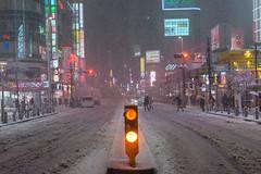 Snow Caked Shinjuku (Dave Schaefer) Tags: night nightphotography street streetphotography urban city cityscape tokyo japan japanese shinjuku neon lights asia colors moody