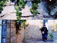 yokohama (osanpo_traveller) Tags: japan yokohama olympus penf leica summilux 15mm