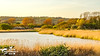 Sandown Lake Countryside (SLHPhotography1990) Tags: 2017 april sandown sony sophs culver downs walk isleofwight isle wight area natural beauty outstanding country countryside rural landscape lake water reservoir reeds wetland native british flowers