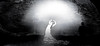 dancer1- 1 (Poli Maurizio) Tags: sony sonydsch200 disegno art abstract painting sculpture museum gallery virtual artist master famous canvas painter collection drawing impressionism naturalism renaissance expressionism realism baroque sketch garden portrait autumn flower light nature sky spring summer indoor travel water woman yellow blue black white color movement figure macro photo object fine unlimited still life mattepainting fantasy fantastic facebook twitter linkedin pinterest instagram tumblr outdoor atmosferic watercolor technique surrealism digitalart 3dweddingpartyfamilytravelfriendsjapanvacationlondonbeachcaliforniabirthdaytripnycsummernatureitalyfrancemeparisartflowerssanfranciscoeuropechinaflowernewyorkwaterpeoplemusiccameraphone 3daustraliachristmasusaskygermanynewcanadanightcatholidayparkbwdogfoodsnowbabysunsetcitychicagospaintaiwanjulybluetokyoenglandmexicowinterportraitgreenred 3dpolimaurizioartworkredfunindiaarchitecturegardenmacrospringthailandukseattlefestivalconcertcanonhouseberlinhawaiistreetlakezoofloridajunemaywhitevancouverkidstreecloudstorontobarcelonageotaggedhome 3dbwbwdigitalseadaytexasscotlandcarlighthalloweencampingchurchanimalstreeswashingtonrivernikonaprilbostongirlirelandgraffitiamsterdamrocklandscapeblackandwhitecatsnewyorkcitysanromeroadtripurbanhoneymoonocean 3dwatercolorsnewzealandmarchblackmuseumyorkhikingislandmountainsyellowsydneysunhongkongshowgraduationcolorfilmmountainanimallosangelesschoolmoblogphotodogs 3dartdesigndisegnosiciliacalabriabasilicatacampaniamarcheabruzzomoliselaziotoscanaemiliaromagnalombardiavenetofriuliveneziagiuliapiemontevalledaostaliguriatrentinoaltoadigepuglia 3dlandscapepaesaggiolunasolemarenuvolecittàtramontoalbamontagnecollinenebbialuceautomobilearredamentointerniesterninaturamortacieloragazzadonnauomobambinofruttabarca 3dcanigattirinascimentomodelbarocconaturalismomattepaintingfuturismoastrattismocubismosurrealismorealismoiperealismoclassicismorococomanierismoromanticismoimpressionismogiocovirtuale