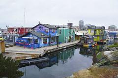2018_02_12_43/365 Places Fishermans Wharf (Jodi J.M.) Tags: 365the2018edition 3652018 day43365 12feb18 victoriabc fishermanswharf