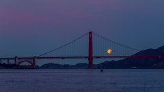 Setting Lunar Eclipse January 31, 2018 (Jeffrey Sullivan) Tags: moon bridge san francisco total lunar eclipse astrophotography astronomy night travel photography bay area golden gate colorful day clouds ocean california usa canon eos 70d photo copyright 2018 jeff sullivan january 31 seascape scenic peaceful northerncalifornia beltofvenus