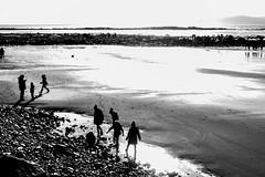 (Owen Molloy) Tags: pentaxq pentax galway ireland éire wildatlanticway gaillimh silverstrand beach monochrome blackandwhite