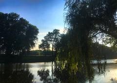 Nature (Darkestbutterfly) Tags: nature trees tree green sunshine sunset sun perfect