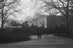 Man with Cane, Sunset Park, Brooklyn (josephkrings) Tags: 1stavenue brooklyn greenwoodcemetery ilfordhp5 newyork nikkor28105mm13545 nikonn70 sunsetpark blackandwhite park silhouette
