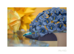 Origami Flowers (Meu :-)) Tags: origami origamiflowers colours paperart soft dreamy geometricshapes curves lines flower