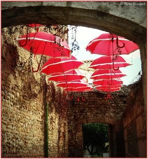 Allée avec ciel de parapluies rouges - Explore 19/01/2018