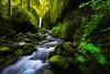 Elf Lands (circleyq) Tags: oregon green creek landscape columbia river gorge
