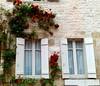 FONTENAY - Borgogna - (Francia) (cannuccia) Tags: francia fontenay borgogna finestre windows rose facciate bianco due fiori cdp