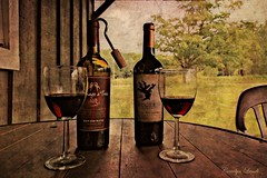 Hooked on Summertime Wine (socalgal_64) Tags: carolynlandi pottercounty potter tioga pennsylvania cabin woods wine glasses trees picturesque texture summer summertime bottles corkscrew redneckcorkscrew hook hooked table tableandchair bistroset porch usa coth5
