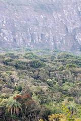 Tiradentes-MG (Johnny Photofucker) Tags: tiradentes minasgerais mg brasil brazil brasile serra sierra serradesãojosé sãojosé lightroom cerrado 100400mm vegetação natura nature natureza floresta foresta forest