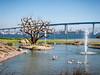Coronado Bridge (Ginny Winblad) Tags: coronadobridge sandiego coronado marriott