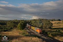 Warrenheip Jackhammer (R Class Productions) Tags: goods freight train victorian railways grain southern shorthaul railroad ssr s class t bulldog streamlined emd 657c