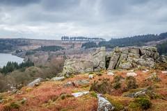 Snappers Tor (Rich Walker75) Tags: dartmoor devon nationaltrust landscape landscapes landscapephotography tor cloud sky rock sheep burrator canon eos100d efs1585mmisusm eos england greatbritain