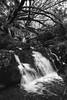 Río Chenlo, Porriño (Foxspain Fotografía) Tags: rio chenlo porriño paisaje foxspain foxspainfotografia riochenloporriño landscape seda efectoseda naturaleza nature agua water river