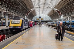 The lonely walk to The Lawn (Nodding Pig) Tags: paddington railway station london train england greatbritain uk 2017 passenger class43 dieselelectric locomotive mtu brel 43155 hst highspeedtrain gwr greatwesternrailway thelawn 201709308109101