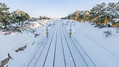 Winter (GC - Photography) Tags: landscape snow invierno winter espinosadeloscaballeros castillayleon españa spain nikon d500 gcphotography tokinaaf1116mmf28 traintracks viasdetren