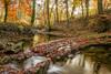 Reflets sur le Veyron (Martial Blanchoud) Tags: suisse veyron rivière vaud automne poselongue leefiltter feuille eau reflets