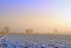 Lovely winter (Tobi_2008) Tags: winter landschaft landscape bäume trees himmel sky ciel schnee snow sachsen saxony deutschland germany allemagne germania elitegalleryaoi bestcapturesaoi aoi