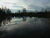 Winter Pond (ambrknr) Tags: nature western oregon eugene delta ponds pacific northwest willamette valley water