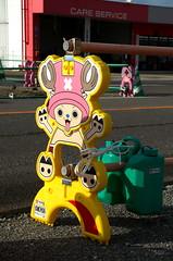 Tony Tony Chopper Barricade (Bracus Triticum) Tags: tony chopper barricade miyazakiprefecture 宮崎県 九州 kyushu 日本 japan 9月 九月 長月 くがつ kugatsu nagatsuki longmonth 2017 平成29年 fall autumn september