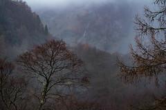 Borrowdale Storm - Lake District, UK (Nickscape) Tags: lakedistrict borrowdale lakeland storm