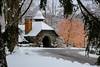 samsebeskazal-2142.jpg (samsebeskazal) Tags: winter newjersey ringwood