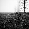 Carré de campagne. (steph20_2) Tags: panasonic gh3 m43 714 lumix paysage campagne countryside picardie oise hiver winter monochrome monochrom brouillard brume noir noiretblanc ngc blanc black bw white skanchelli