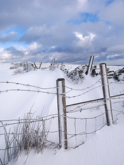 Frosted fence (Thrift) Tags: snow winter edale rushupedge lordsseat peakdistrictthe great ridge