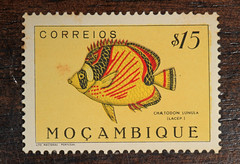 Mozambique stamp (judygva) Tags: