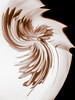 Monochrome Abstract (Mazzlo) Tags: macromonday macro monochrome panasonic fz2000 fz2500 flower sepia swirled