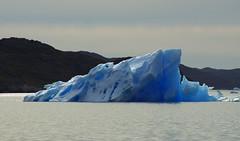 Day 0: Icebergs on the way to Nanortalik (Gregor  Samsa) Tags: greenland greenlandic north deepnorth summer august september journey trip exploration wild wilderness nature scenic scenery outdoors travel tasermiut fjord sea ice iceberg