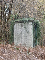 Ivy covered concrete hut at the former Mountfield Halt, between Robertsbridge & Battle. (SRDemus) Tags: disusedstation outsidetoilet ivy railwayline eastsussex crossingkeepershut hut elsanbucket toilet hastingsline mountfieldhalt mountfield precastconcretehut precastconcrete lineman'shut linesidehut fogman'shut srconcrete brhut britishrailways concretehut concrete southernrailway srhut sr railwayhut
