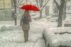 Red umbrella in blizzard (Matjaž Skrinar) Tags: 100v10f 250v10f