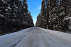 The road... (drafiei1) Tags: road sky bluesky trees tree banffnationalpark banff winterwonderland winter snowcovered canada alberta nikon