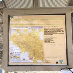 2018-02-15 GOPS Geology Hike (111) (MadeIn1953) Tags: 2018 201802 20180215 greatoutdoorsgo go gops greatoutdoorspalmspringsgops hiking california coachellavalley riversidecounty meccahills paintedcanyon laddercanyon geologywalk