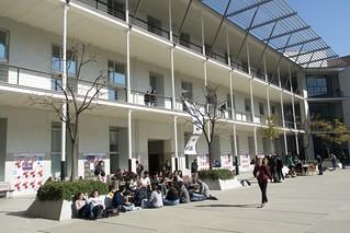 Prenent el sol a la Universitat Pompeu Fabra,  Campus de Ciutadella, Barcelona.