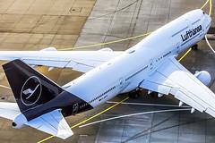 Lufthansa Boeing 747-8i new livery (D-ABYA) (wilco737) Tags: eddf fra frankfurt am rhein main international airport lufthansa dlh lh explorethenew sayyestotheworld new livery dabya brandenburg airplane plane flugzeug flugzeuge aviation fliegerei spotting spotter planespotter planespotting boeing boeing747 boeing748 boeing7478 b747 b748 b7478 747 748 7478 boeing7478i b7478i 7478i intercontinental 37827 ln1443 ln 1443 tower atc