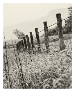 Oban Fields & Fences