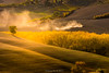 Tuscany Autumn (Ding Ying Xu) Tags: europe italy tuscany autumn fields rural countryside fallcolors farmland countryroad tractor cultivation