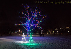 Niagara Falls Festival ofLights (13skies (broke my wrist)) Tags: niagarafallson festivaloflights display lights xmas christmas tourism visual nighttime nightshot sonya57
