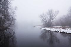 Winterwetter (Lilongwe2007) Tags: hamburg deutschland natur landschaft winter schnee januar eis wetter nebel dunst wolken bäume pflanzen wohldorfer wald ohlstedt