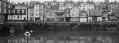 Falmouth Harbour, Homes Overlooking The Sea (Chris.Moakes) Tags: film analogue analog xpan hassleblad fuji tx2 panoramic street falmouth uk chris moakes