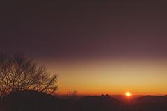 (Laura Marchini) Tags: lecco italy travelphotography landscape landscapephotography wasteland sunset sunny sunsetlovers world topoftheworld mountain
