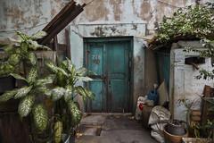 Teal door (Thomas Mulchi) Tags: samphanthawongdistrict bangkok thailand 2017 chinatown door entry plants green wall krungthepmahanakhon th